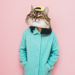 Funny face of cat's head with human body in blue coat. Fashion Contemporary art collage.