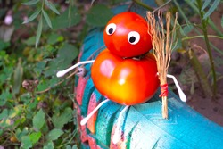 Funny figure from tomatoes in the garden. An example of decorative work with vegetables. Autumn harvest.