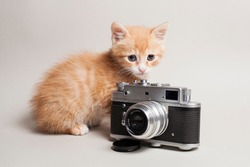 funny ginger kitten and a antique camera on a light background