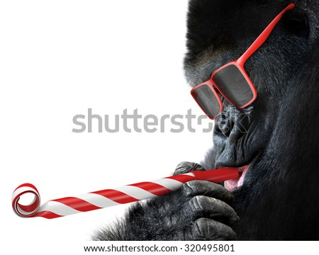 stock photo funny gorilla with red sunglasses celebrating a party by blowing a striped horn 320495801 - Каталог — Фотообои «Животные»