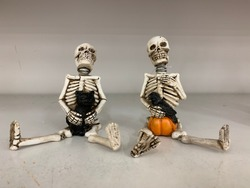 Funny Human skeleton friends sitting with pumpkin, black crow and cat.  An image composed for Halloween celebration party fun. Ideal for greeting cards and more