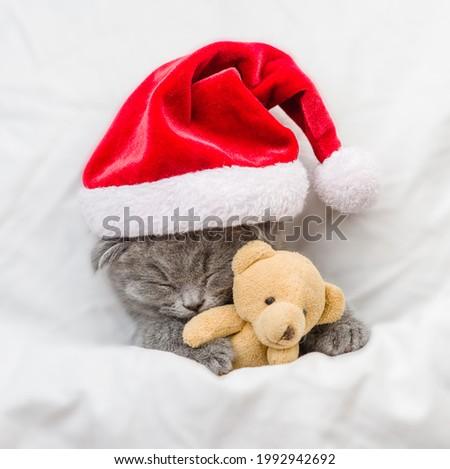 Funny kitten wearing red santa's hat sleeps under white blanket and hugs favorite toy bear