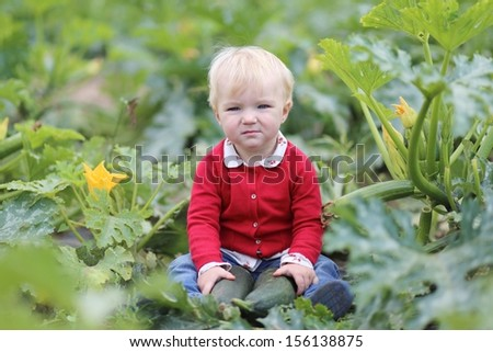 Funny little baby girl in colorful red sweater holds ripe freshly picked zucchini sitting in a middle of vegetable field on farm