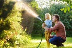 Funny little boy with his father watering plants and playing with garden hose in sunny backyard. Preschooler child having fun with spray of water. Summer outdoors activity for kids.