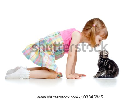 funny little girl kid playing with Scottish kitten