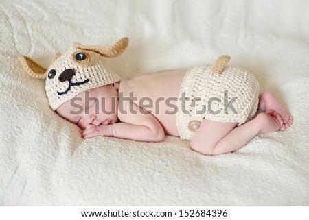 funny little newborn wearing dog costume
