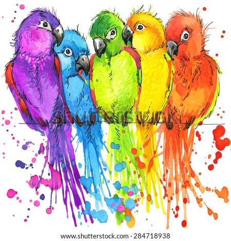 Stock Photo Funny parrots T-shirt graphics, colorful parrots illustration with splash watercolor textured background. illustration watercolor colorful parrots for fashion print, poster textiles, fashion design