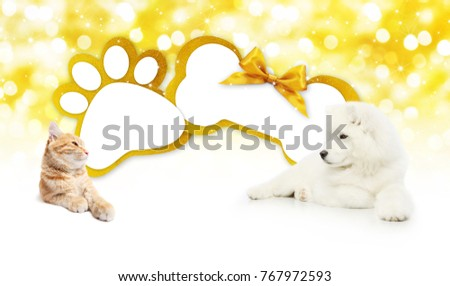 funny pets cat and dog  together with bone and paw imprint shape gift card golden ribbon bow on blurred christmas lights background blank template and copy space #767972593