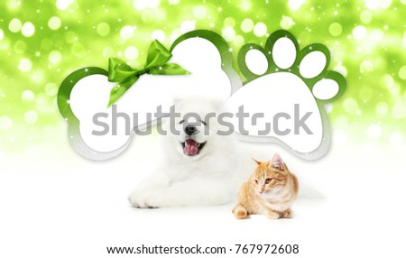 funny pets cat and dog  together with bone and paw imprint shape gift card green ribbon bow on blurred christmas lights background blank template and copy space #767972608