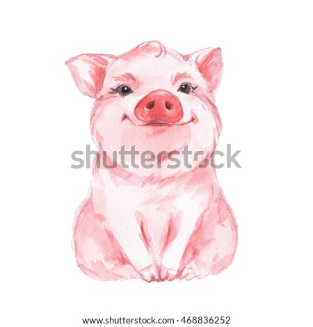 Funny pig. Cute watercolor illustration 1