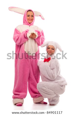 Funny pink rabbit with white rabbit isolated on white background