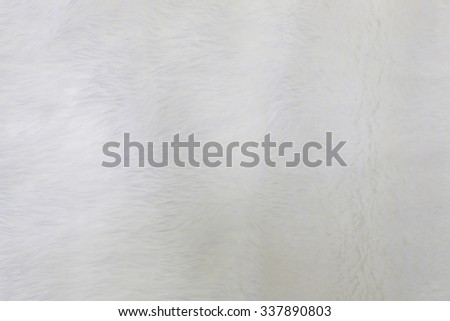 fur background. Close up #337890803