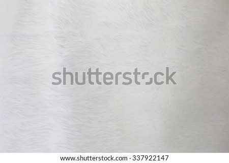 fur background. Close up #337922147