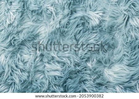 Fur texture top view. Blue fur background. Fur pattern. Texture of turquoise shaggy fur. Wool texture. Flaffy sheepskin close up