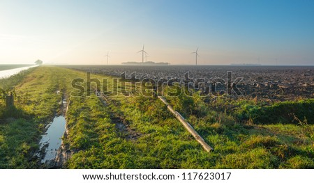 Furrows in a field at dawn