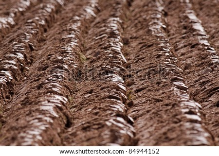 Furrows on a ploughed field - shallow depth of field.