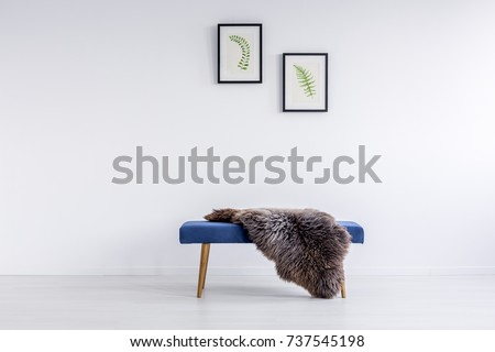 Furry rug thrown on blue hallway bench in room with posters hanging on white wall #737545198