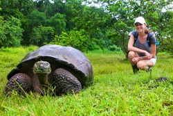 Galapagos giant tortoise with young woman (blurred in background) sitting next to it on Santa Cruz Island in Galapagos National Park, Ecuador. It is the largest living species of tortoise.
