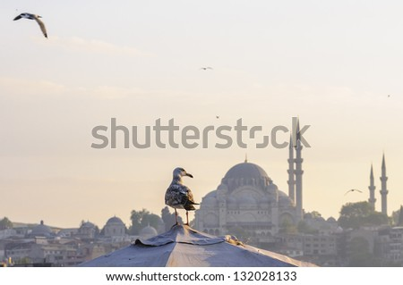 Galata waterfront with view of Suleymaniye mosque, Istanbul, Turkey