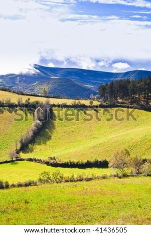galician fiels in the winter Zdjęcia stock ©