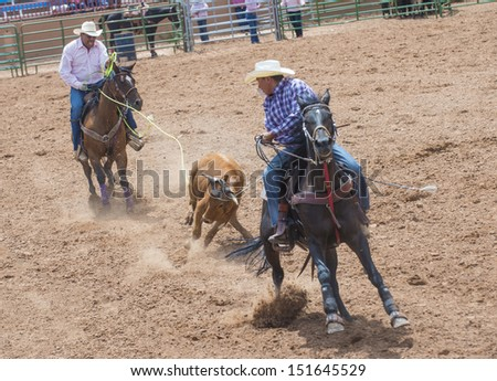 GALLUP , NEW MEXICO - AUGUST 10 : Cowboys Participates in a Calf roping Competition at the 92nd annual Indian Rodeo in Gallup, NM on August 10 2013