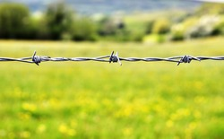 Galvanised steel barbed wire stretches across a rural landscape
