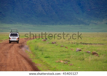 Game drive. Safari car on game drive in, Ngorongoro crater in Tanzania.