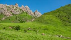 Ganjia grasslands landscape. Grasslands around Xiahe, Gansu province, China. Ganjia grasslands are more pristine and less visited than Sangke grasslands.