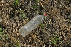 garbage from one white plastic bottle with a red cork lies on gray dry grass and ground in nature