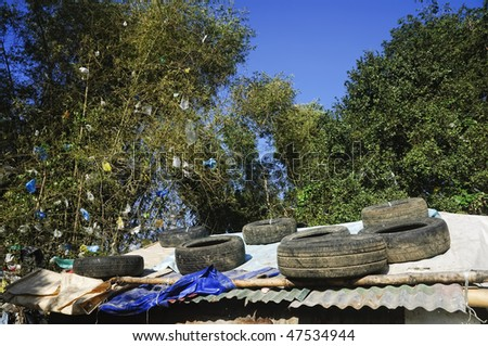Garbage tires used to support roof of shanty; wind-strewn plastics cling to bamboo tree