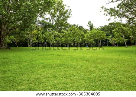 Garden, backyard #305304005
