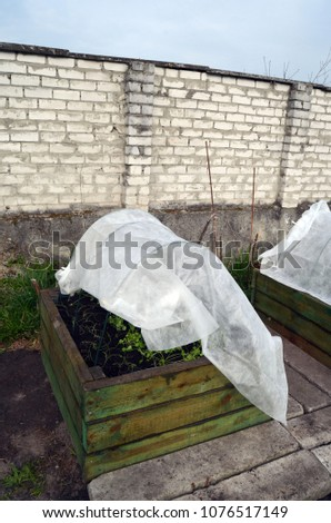 Garden beds in wooden frame geotextile covered #1076517149