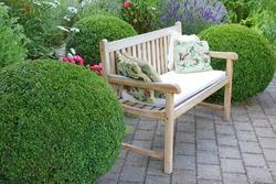 Garden bench between boxwood