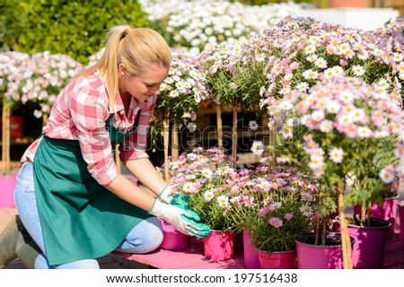 Garden center woman worker kneeling by pink potted flowers sunny