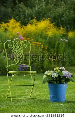Garden chair with hydrangea in a garden
