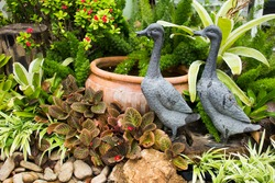 garden decoration with small pond
