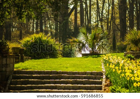 Garden design. Formal garden. Spring in garden.
