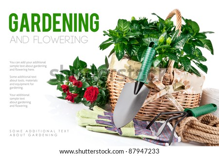garden equipment with flowers and green plants isolated on white background