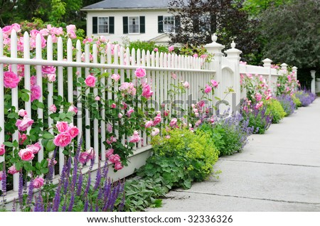 Garden fence and gate with pink roses, salvia, catmint, lady's mantle bordering house entrance