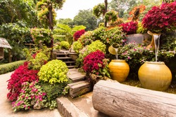 Garden flowers , mae fah luang garden