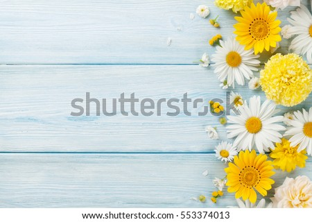 Stock Photo Garden flowers over blue wooden table background. Backdrop with copy space