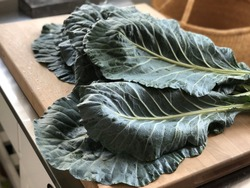 Garden fresh collard greens on cutting board ready to be cut and prepped