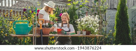Garden,gardening home. Girl replanting green pasture in home garden.agriculture,indoor garden,room with plants banner Potted green plants at home, home jungle,Garden room gardening, Plant room