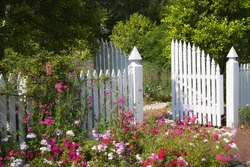 Garden gate with White Picket Fence