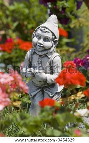 garden gnome between flowers