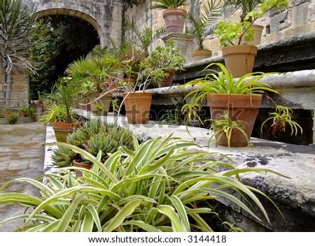 Garden & Horticulture Series - imagery depicting various Mediterranean gardens