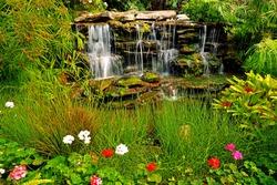 Garden in Angkhang  Mountain, Chiangmai : Thailand
