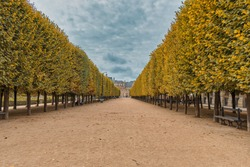 Garden in Palais-Royal Palace, Paris