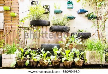 garden in urban at sukumwit 62 bangkok #360954980