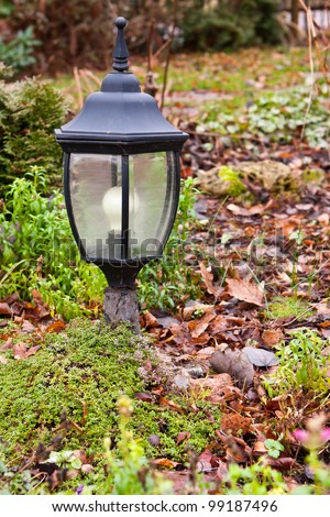 Garden lamp on moss by old leaves